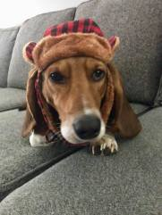 Walter in a hat